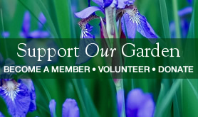 Support Our Garden